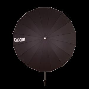 cactus paraguas